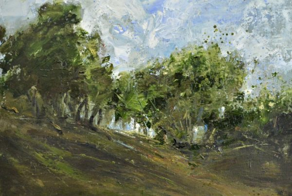 colin merrin 2016 new forest fritham 2