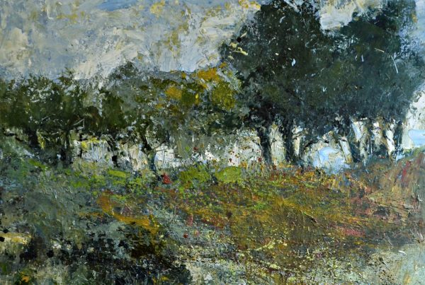 colin merrin 2016 new forest trees at fritham