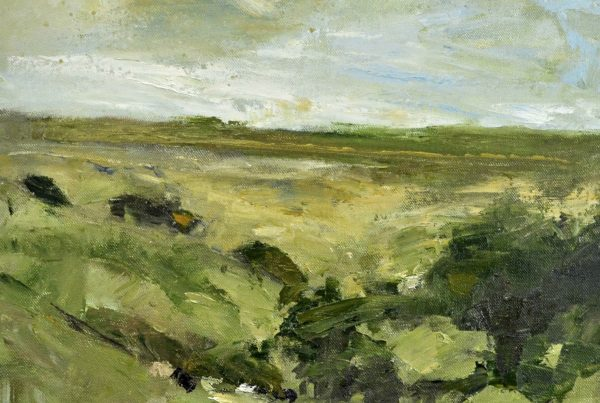 colin merrin 2016 new forest whitefield moor