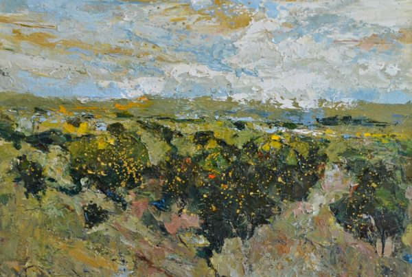 colin merrin 2016 gorse new forest series